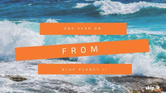 Blue Planet II One Year On Skip It_ Blog Header Image